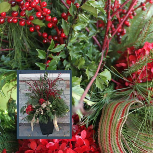 Peace on Earth holiday container garden