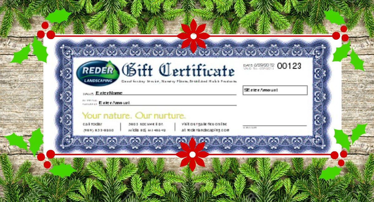Our Gift Certificates Make a Perfect Holiday Gift